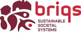 BRIQS Foundation | Sustainable Societal Systems