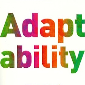 Adaptability is the new strategy